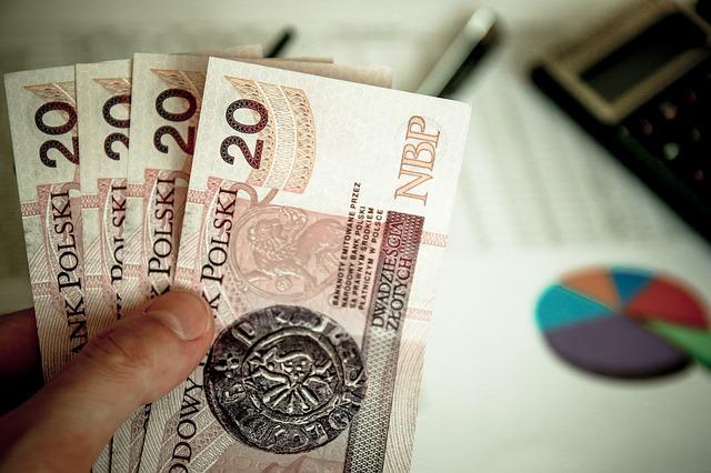 ppk pracownicze plany kapitałowe