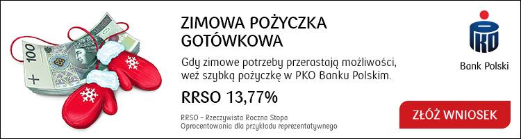 pko bank polski baner pożyczkowy-portal